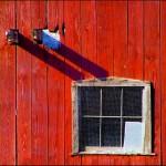 Red Building © Bob Pliskin 2013