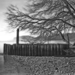 Teller's Point Dock Remnant © Bob Pliskin 2013