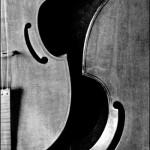 Two Viols da Gamba © Bob Pliskin 2013